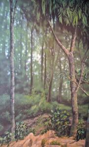 Leopold_Rainforest